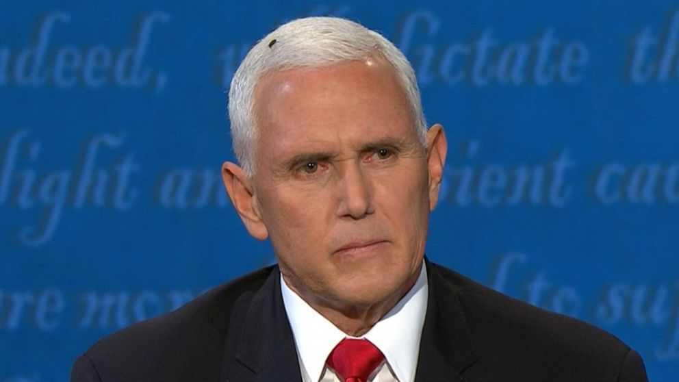 The Fly On Mike Pence's Head Calls The Show! [EXCLUSIVE INTERVIEW]
